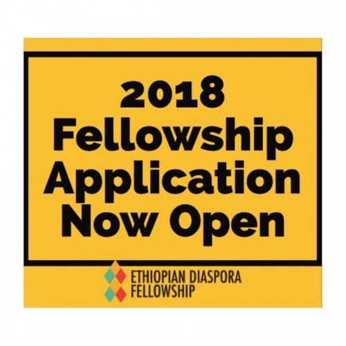 Ethio Diaspora Fellowship Application Now Open